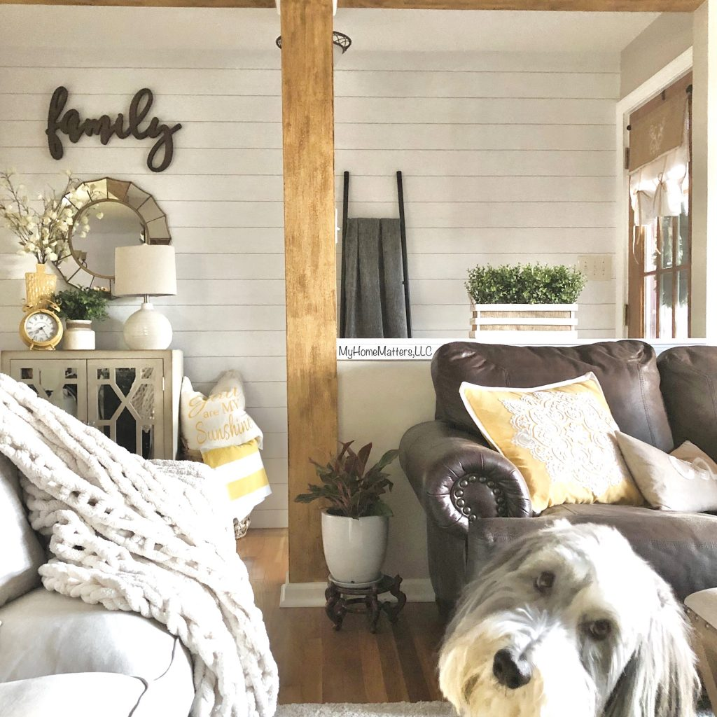 LIVING ROOM WITH SHIPLAP WALL AND CUTE DOG