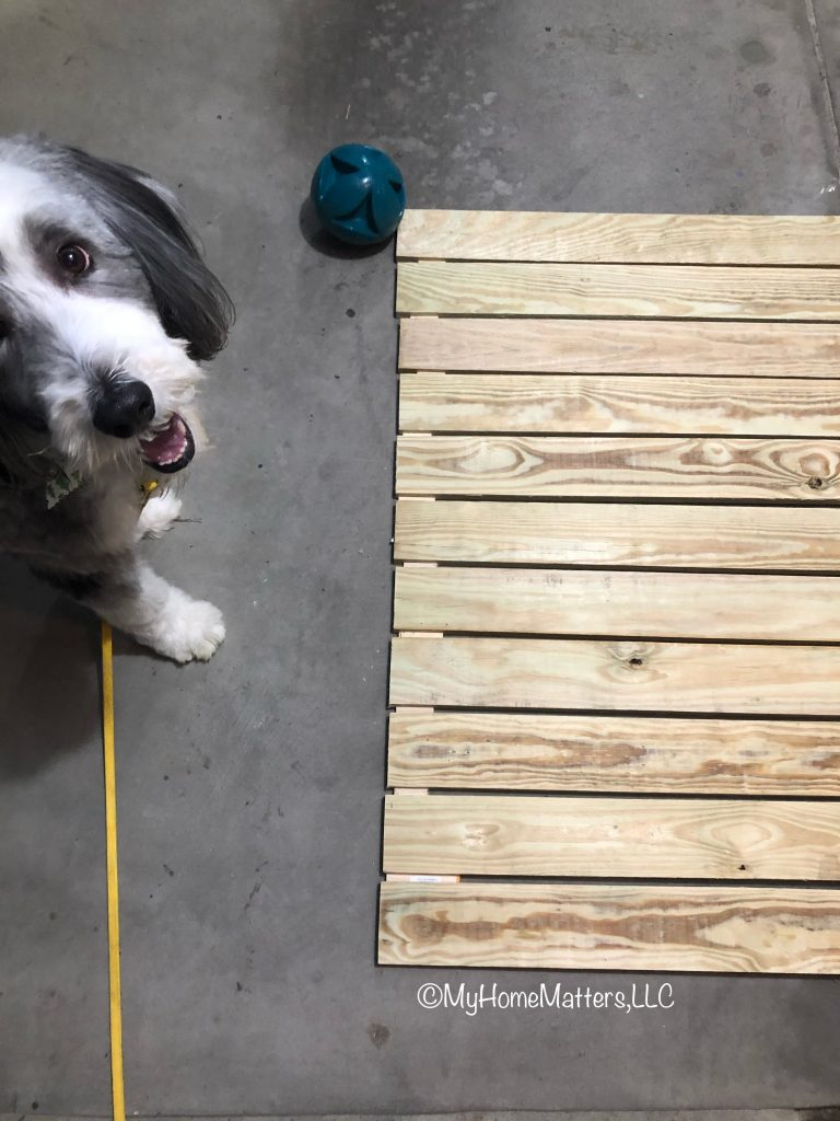boards layed out on garage floor with dog looking on